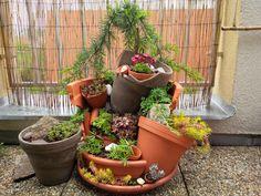 miniaturní zahrada