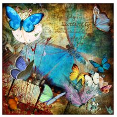 Fly, Fly Butterfly..., created by vkevans on Polyvore