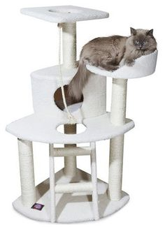 Stylish Cat Condo Furniture with Rope and 5 Sisal Posts, Off-White Color ** Don't get left behind, see this great cat product : Cat Tree and Tower