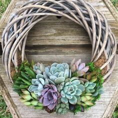 "146 Likes, 1 Comments - Woman's Day Magazine (@womansdaymag) on Instagram: ""Succulent wreaths = the perfect alternative for spring front door decor  #succulents #spring…"""