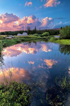 ✮ Pond in Tuolumne Meadows, Yosemite National Park, California - Absolutely Gorgeous!