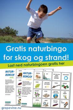 Naturbingo er kjempegøy!  Det er en morsom, liten uteaktivitet for barna – i skogen, i parken eller på stranden! Du får to forskjellige bingobrikker som fungerer fint om sommeren – en for skogen / parken og en for stranden.  Du får to bingobrett, en for skogen og en for stranden! Skriv ut så mange du behøver!  Bruk rabattkoden: SOMMERLEK i feltet for rabattkode så får du naturbingoen helt gratis!  Last ned naturbingoen gratis her>> Bingo, Grape Vines, Nature, Vineyard Vines, Vines