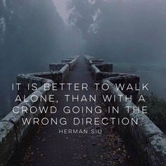 It is better to walk alone, than with a crowd doing in the wrong direction. - Herman Siu