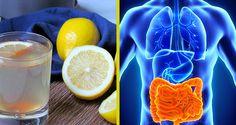 voici-comment-eliminer-des-kilos-toxines-et-dechets-de-votre-organisme