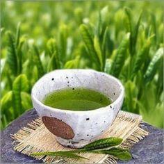 Delapa Thailand: มารู้จักชาเขียวกับแบบลึกซึ้งกันดีกว่า