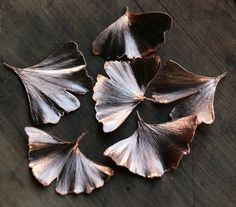 Gingko necklace of natural leaves, copper electroformed to make this unique and beautiful pendants.  Ginkgo tree is the oldest one at the Earth. Millions of years ago, at the times of dinosaurs, in Jurassic, this leaves were slowly falling in autumn - quite different autumn from the one we have nowadays. Only leaves were and are the same. We took them, real and natural, and covered with copper using electroforming method. So here they are - real and natural metal leaves of Ginkgo biloba.  As…