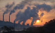 The 10 ways to protect yourself against air pollution   Daily Mail Online