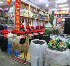 Living in dalian china