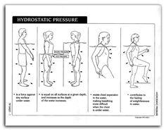 1000 Images About Rehab Physio Exercises On Pinterest
