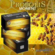 Produk Moment Propolis - Agen Moment Indonesia