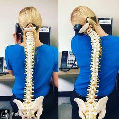 Best Scoliosis Exercises For The Neck - Best Scoliosis Exercises Chiropractic Office, Family Chiropractic, Chiropractic Wellness, Chiropractic Quotes, Clinique Chiropratique, Posture Fix, Alexander Technique, Scoliosis Exercises, Spine Health