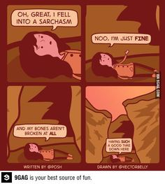 Fell Into A Sarchasm