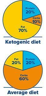 32 Best Ketogenic Infographics Images Keto Foods Low