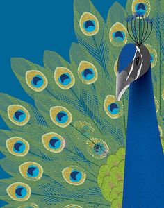 Peacock ~ by Leanne Phillips Peacock Quilt, Peacock Decor, Peacock Art, Peacock Design, Peacock Colors, Peacock Feathers, Peacock Images, Peacock Photos, Peacock Painting