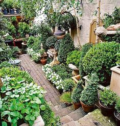 Because you have a small garden, it doesn't want to work a lot. A small garden can be very exotic with just a little planning. Improving a beautiful modern garden [ … ] Small Courtyard Gardens, Small Gardens, Outdoor Gardens, Little Gardens, Modern Gardens, Flower Garden Design, Modern Garden Design, Small Space Gardening, Garden Spaces