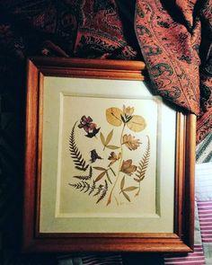 #art #leaves #craft #handmade #dryflower #collage #dryleaf  #illustration #flower #color #colour #feitoamao #folhaseca #flores #brazil #botanicalart #creative #nature #garden #decor #instaart #illustrated #instapic #artwork #instalike