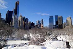 Inverno+a+New+York:+le+10+migliori+cose+da+fare+con+i+bambini