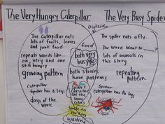 Compare/cobtrast 2 reading selections in a venn diagram: Eric Carle author study ideas. I love Eric Carle <3!