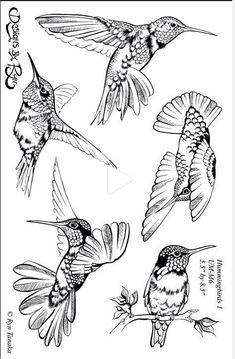 36 Ideas Humming Bird Sketch Hummingbird Drawing For 2019 Bird Drawings, Animal Drawings, Drawing Sketches, Pencil Drawings, Drawing Birds, Wood Burning Patterns, Wood Burning Art, Hummingbird Drawing, Hummingbird Tattoo Black