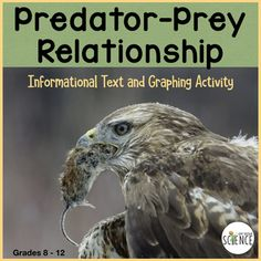 Ecology: Predator Prey Relationship Informational Text and Graphing High School Biology, High School Science, Life Science, Common Core Science, Biology Classroom, Graphing Activities, Food Chains, Line Graphs, Next Generation Science Standards
