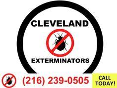 Pest Control Abbotsford  6042567316  24 Hour Emergency Exterminator Service Abbotsford Bc