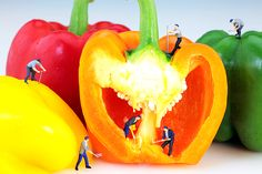 Mining In Colorful Peppers