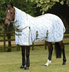 Teal Shires Tempest Plus 200G Horse Turnout Rug Combo 1200 Denier in TEAL 73 87