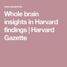 Whole brain insights in Harvard findings   Harvard Gazette