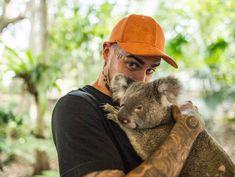 Koala koala koala #quebonafide #quebo #quequality #photo #rap #hiphop #quebonafidetour #redbull #koala #idol #fani #fan The Vamps, Hot Boys, Funny Moments, Rap, Hip Hop, Idol, Handsome, In This Moment, Quesadilla