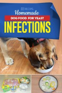 Recipe Homemade Dog Food For Yeast Infections Dog Food Recipes