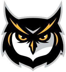 Hasil gambar untuk owls gaming logos