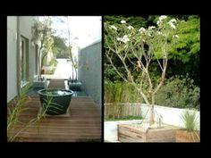 6 vídeos de jardinagem para você assistir no final de semana | Casa