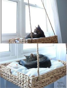 DIY Basket for Cat DIY Basket for Cat<br> Hello, my smart reader! Today I am going to share with you amazing DIY basket ideas for your cat's comfortable sleep. I know every owner Diy Projects On A Budget, Diy Cat Tree, Cat Basket, Cat Playground, Cat Room, Pet Furniture, Furniture Market, Luxury Furniture, Cat Accessories