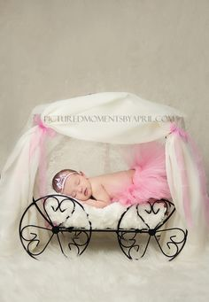 newborn baby photographer clarksville TN and Fort Campbell KY