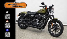 2016 HARLEY-DAVIDSON XL883N in Olive Gold At Auckland Harley-Davidson,  New Zealand www.amps.co.nz