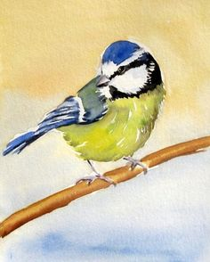 """art paintings gallery for - """"Blue Tit """"Watercolor Bird Painting, painting by artist Meltem Kilic""""Blue Tit """"Watercolor Bird Painting, painting by artist Meltem Kilic Watercolor Bird, Watercolor Animals, Watercolor Paintings, Watercolors, Art Painting Gallery, Painting & Drawing, Bird Artwork, Bird Illustration, Bird Drawings"""