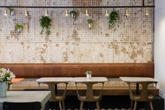 Textured wall. Brass Track Lighting.