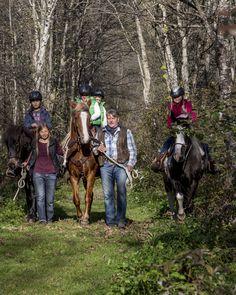 Reiten in der Surselva. Foto: nordlichtphoto.com Horses, Animals, Pictures, Families, Horseback Riding, Summer Recipes, Animales, Animaux, Horse