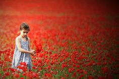 Poppies for her alone