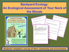 Free Ecology Assessment Activity