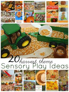 Fall Harvest Sensory Bin Play Ideas! Hands-On Play For The Fall! This collection was inspired by the many wonderful entries we have received for the Ultimate Sensory Play Party which happens weekly! This linky party is a wonderful ways to find new sensory play activities and sensory bins with ...