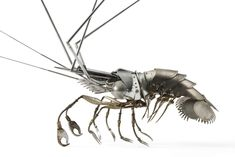 Shrimp. Thorax and head: car mascot and tongs; antennae: radio antennae; abdomen: Solex fenders and hair pins; tail: electrical fans; legs: bike brakes and snail forks. Click for detail.