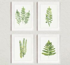 Fern Painting Green Abstract Leaf Watercolor Print Set of 4 Leaves Kitchen Wall Poster Ferns Illustration Living Room Art Gift for Women (55.00 USD) by ColorWatercolor