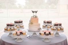 Wedding Cake and Cupcakes - Wedding Cake Ideas - Wedding Cake Display - Love Birds - I Do - Me Too - Coral and Grey Weddings - Cross Creek Ranch, Fl - 12-1 Photography - Babys Breath