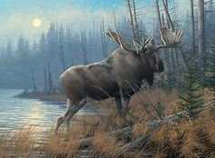 "Michael Sieve Open Edition Framed Print: ""Out of the Mist-Moose"" Artist: Michael Sieve Title: Out of the Mist-Moose Size: x Edition: Open edition Medium: Framed Print About the Art:Op Wildlife Paintings, Wildlife Art, Animal Paintings, Bull Moose, Moose Art, Moose Antlers, Wild Life, Moose Pictures, Hunting Art"