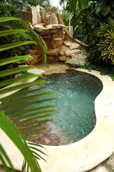 Riviera Maya, Mexico » The perfect little pool.