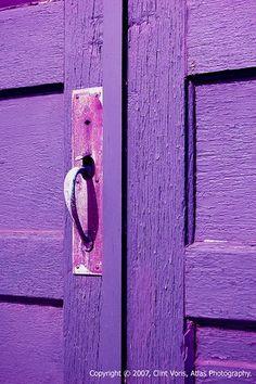 Favorite color Purple by fifi luis