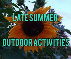 Late Summer Outdoor Activities - The Real Recreation Therapist Therapy Games, Therapy Activities, Local Parks, Get Outdoors, Early Fall, Walking In Nature, Late Summer, Social Skills, Horticulture