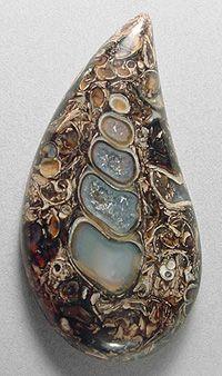 TURRITELLA agate designer cab Silverhawk's designer gemstones.