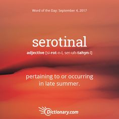 Definitions synonyms antonyms of parsimonious word of the day todays word of the day is serotinal learn its definition pronunciation etymology and more join over 19 million fans who boost their vocabulary every m4hsunfo